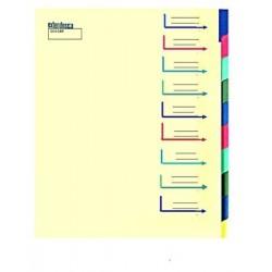TRIEUR CARTE 12 COMPARTIMENTS