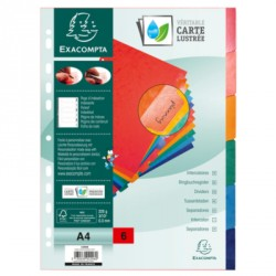 INTERCALAIRE A4 6 TOUCHES MYLAR CARTE FORTE 240G REF223031
