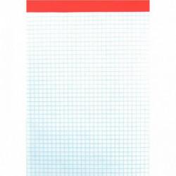 BLOC DE BUREAU A5 100 FEUILLES 60 G, 5X5 SANS COUVERTURE, 14,8X21 CM