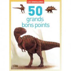 BOITE DE 50 GRANDES IMAGES LES DINOSAURES