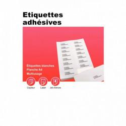 BOÎTE DE 100 PLANCHES D'ÉTIQUETTES ADRESSE MULTI-USAGES, FORMAT 210X297 MM. COIN