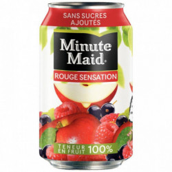 PAQUET  24 BOÎTES 33 CL  MINUTE MAID FRUITS ROUGE SENSATION
