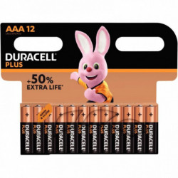 PILE DURACELL PLUS POWER AAA LR3 *PQT12*    5000394018570