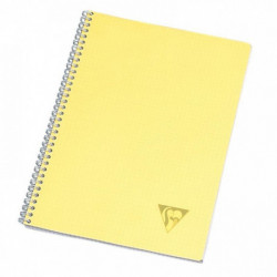 CAHIER SPIRALE LINICOLOR FRESH A4 100 PAGES SEYES 328115C