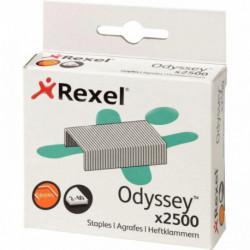 AGRAFES ODYSSEY BTE 2500 60F REXEL 2100050