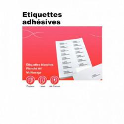 BOÎTE DE 100 PLANCHES D'ÉTIQUETTES ADRESSE MULTI-USAGES, FORMAT 199.6X289.1 MM.