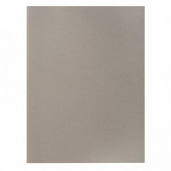 SOUS-CHEMISES COULEURS TRES VIVES ROCK'S 80 G GRIS PQT 100 RAINEX 800009E