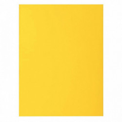 SOUS-CHEMISES COULEURS TRES VIVES ROCK'S 80 G CITRON PQT 100 RAINEX 800011E