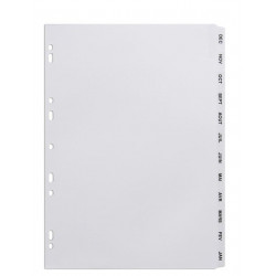 INTERCALAIRE MYLAR A4 12 TOUCHES INVERSEES DEC A JANV AVERY 05267061