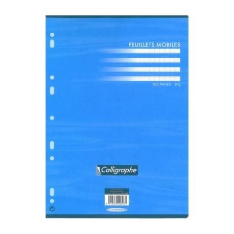 FEUILLET MOBILE BLC PERF. UNIVERS. 21x29,7 90G 200 PAGES SEYES