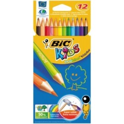 ETUI 12 CRAYONS EVOLUTION ECOLUTIONS ASS.