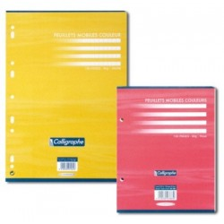FEUILLET MOBILE JAUNE 21x29,7 80G 100 PAGES SEYES