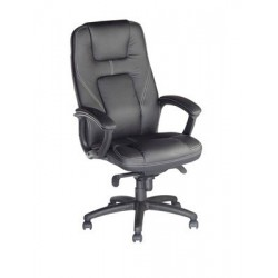 FAUTEUIL PRESIDENT GRAND CONFORT
